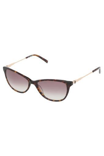 Womens Full Rim Cat Eye Sunglasses - 8903232154065