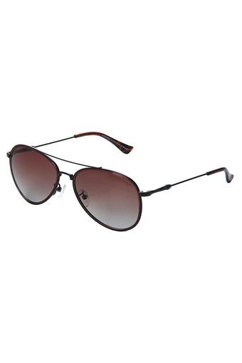 AZZARO -  No Colour Sunglasses - Main