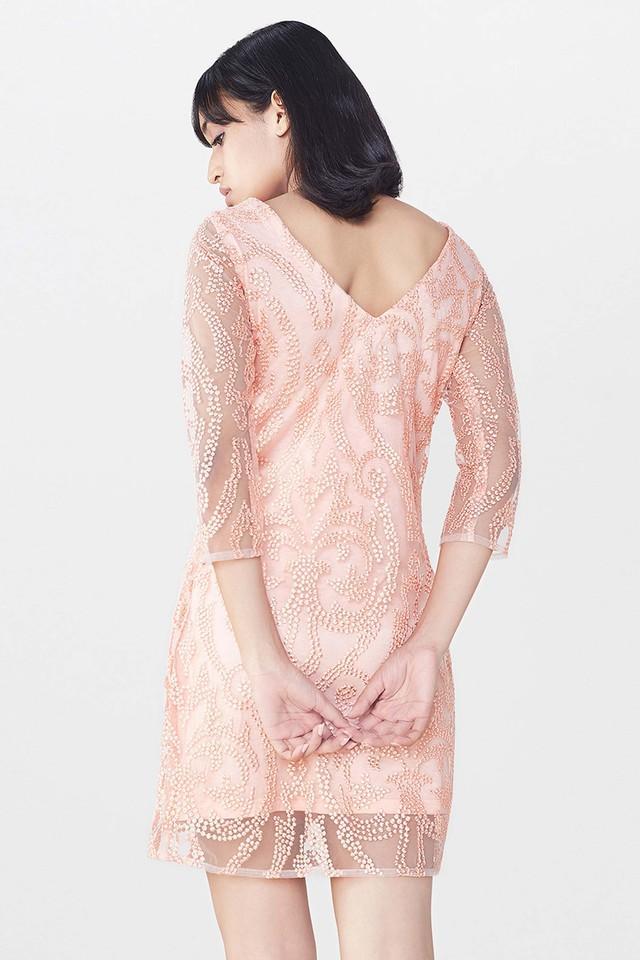 Womens Lace Dress