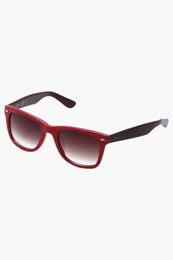 Womens Full Rim Wayfarer Sunglasses