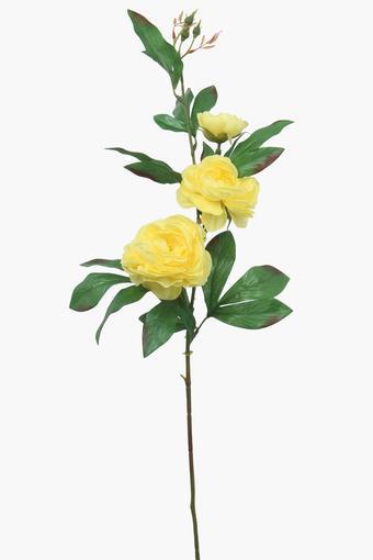 IVY -  MustardVases & Planters & Flowers - Main