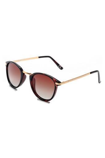 Unisex Full Rim Oval Sunglasses - 2177 C2 50 S