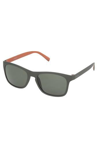 Mens UV protected Lens Wayfarer Sunglasses - PLD3009SLLTH8