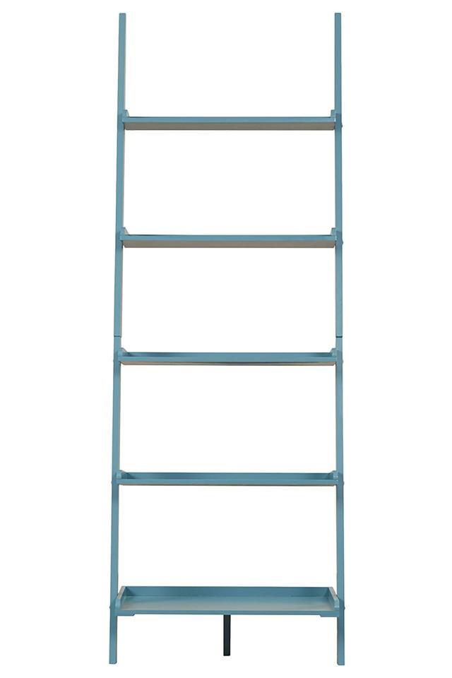 Blue Parkinson Bookshelf