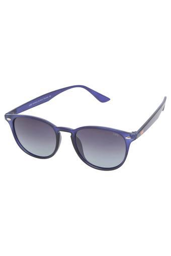 Unisex Full Rim Regular Sunglasses - LI150C122