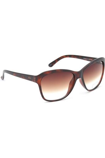 Womens Wayfarer Gradient Sunglasses