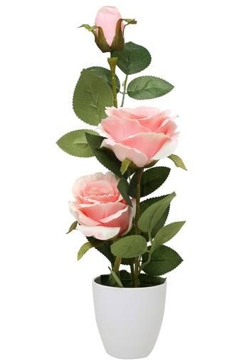 IVY -  Baby PinkVases & Planters & Flowers - Main