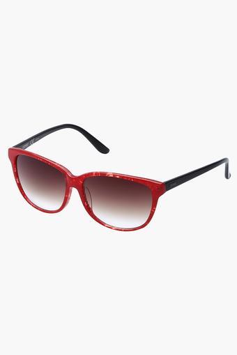 Unisex Full Rim Wayfarer Sunglasses