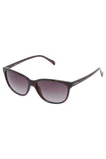 BEBE - Sunglasses - Main