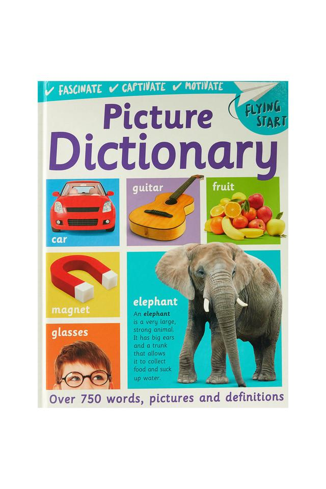Flying Start Picture Dictionary