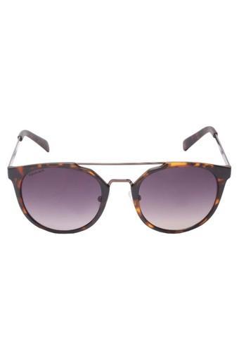 847c20800c7b3 Buy FASTRACK Mens Browline Polycarbonate Sunglasses