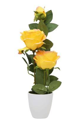 Yellow Rose Potted Plant