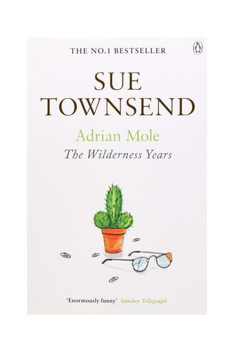 Adrian Mole:the Wilderness Year