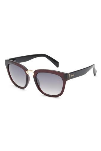 Womens Wayfarer UV Protected Sunglasses