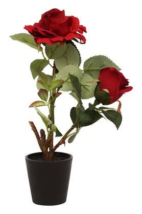 IVY Decorative Potted Red Rose