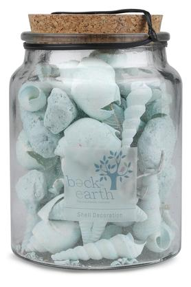 Shells in Glass Jar Artifact Show Piece