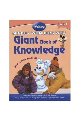 Giant Book of Knowledge (6 in 1)