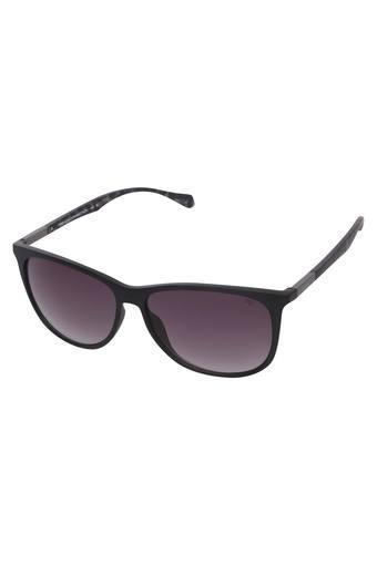 Mens Full Rim Wayfarer Sunglasses - NF8903232142178