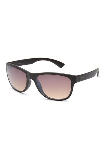Mens Wayfarer Gradient Sunglasses