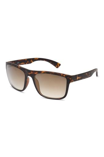 Mens Wayfarer Gradient Sunglasses