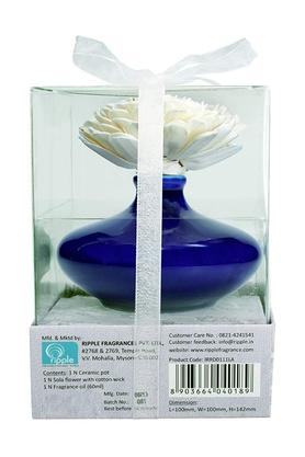 IRIS Sola Flower Reed Diffuser Set