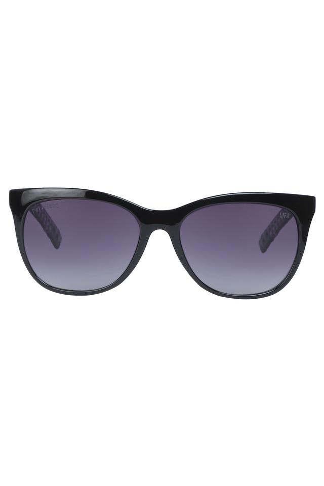 Womens Full Rim Wayfarer Sunglasses
