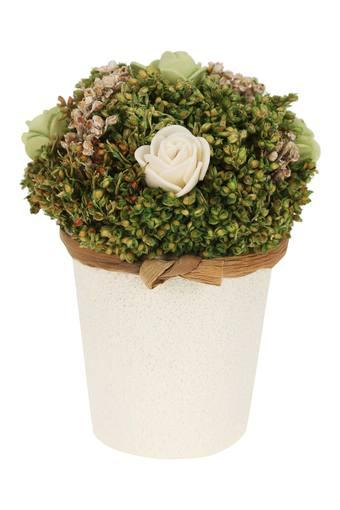 BACK TO EARTH -  Green MixVases & Planters & Flowers - Main