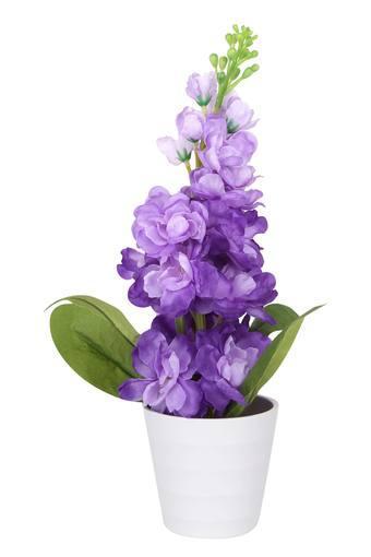Delphinium Flower Pot Arrangement