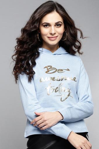 RARE -  BlueSweatshirts - Main