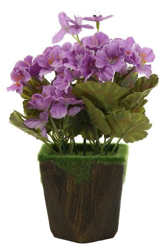 IVY -  Purple Vases & Planters & Flowers - Main