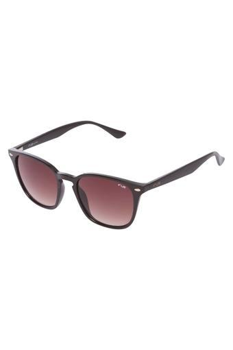 IRUS -  No Colour Sunglasses - Main