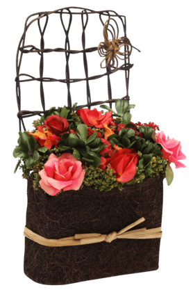 IVYRoses With Gypso In Coir With Fence