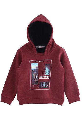 Boys Hooded Neck Printed Sweatshirt