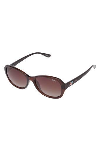 Womens Oversized UV Protected Sunglasses - NIDS2577C2PSG