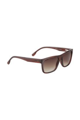 FASTRACK Brown Wayfarers Sunglass For Men-P301BR2