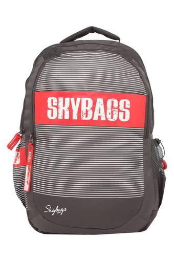 SKYBAGS -  Grey Travel Essentials - Main