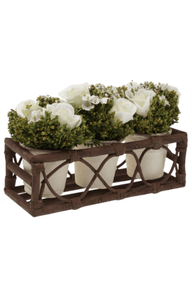 IVY Roses In Rattan Tray (Set Of 3)