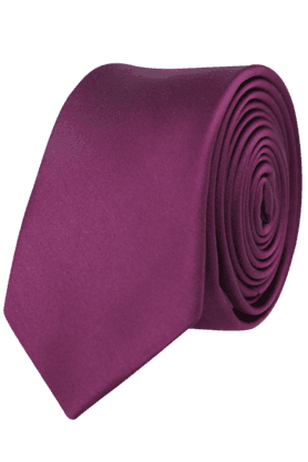Men Basic Solid-coloured Tie