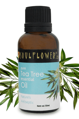 SOULFLOWER Tea Tree Essential Oil - 30 Ml