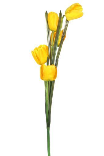 IVY -  OrangeVases & Planters & Flowers - Main