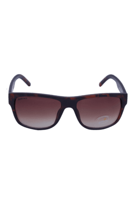 FASTRACK Brown Wayfarers Sunglass For Men-P300BR2