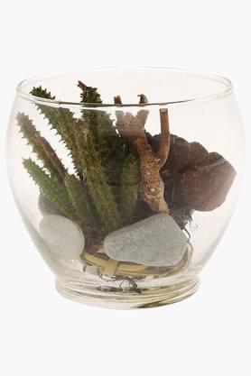 Cacti Green Arr in Glass Bowl