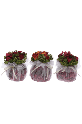 IVY Rose In Pouf Acet Box (Set Of 3)
