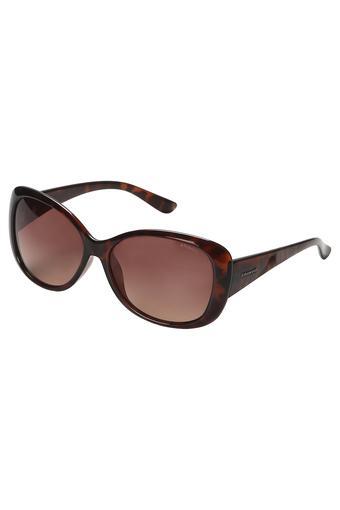 POLAROID - Sunglasses & Frames - Main