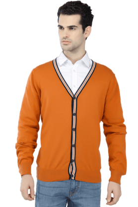 MONTE CARLO Mens Full Sleeves V Neck Slim Fit Solid Sweater