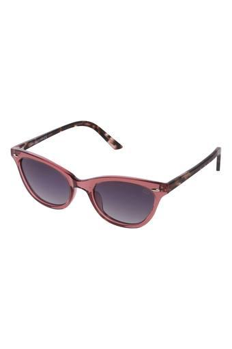 GIO COLLECTION -  No Colour Sunglasses - Main
