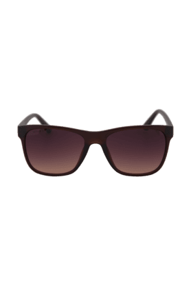 TITAN Eye Plus Glares Matte Brown Full Rim Wayfarer UV Sunglasses For Men - 203CTMLMC