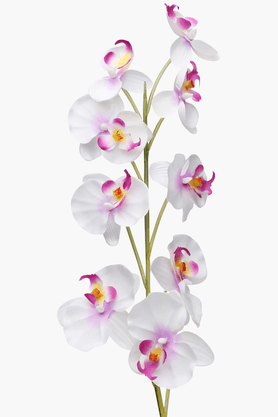 IVY Orchid Flower Stem White