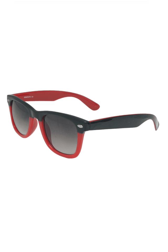 Wayfarer Men's Sunglasses-55781C4S